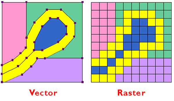 Guide to Raster vs Vector for Print Design